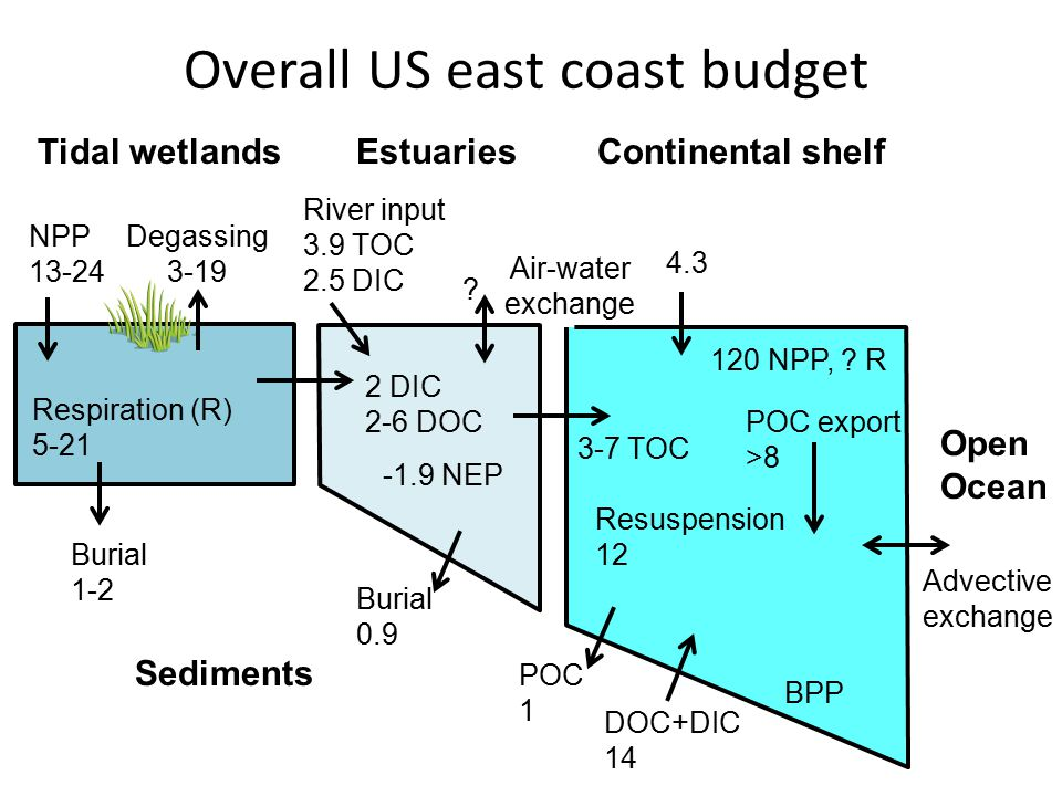 Tidal wetlandsEstuaries Continental shelf NPP 13-24 Degassing 3-19 Burial 1-2 River input 3.9 TOC 2.5 DIC BPP Air-water exchange POC export >8 Overall US east coast budget POC 1 DOC+DIC 14 Respiration (R) 5-21 Resuspension 12 -1.9 NEP 120 NPP, .