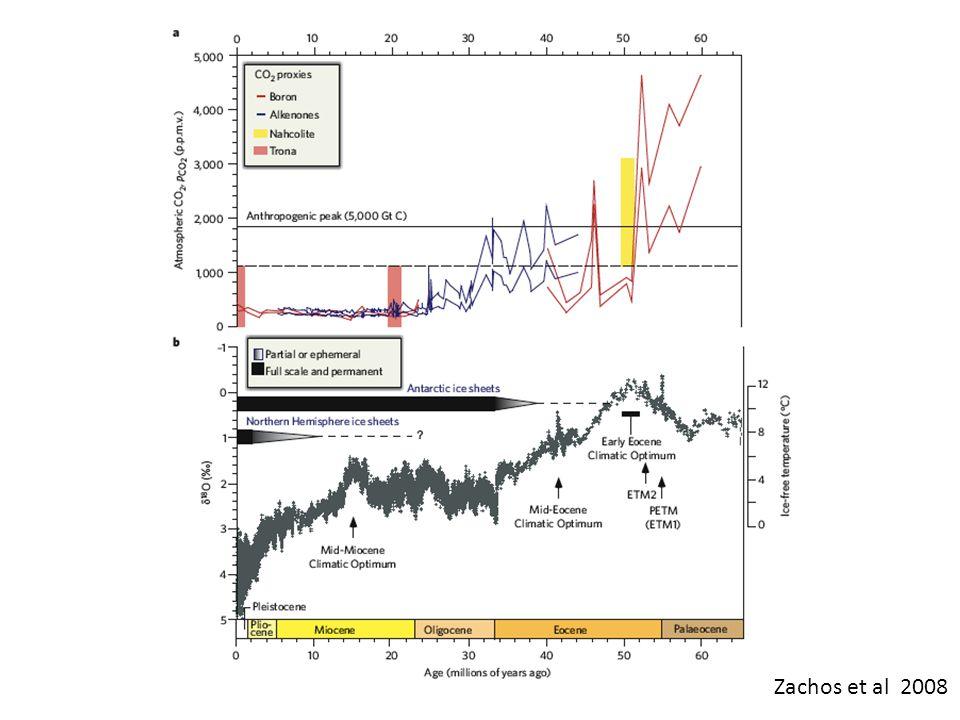 Zachos et al 2008