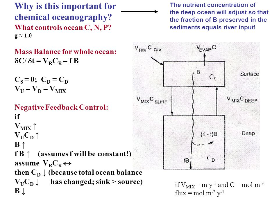 Why is this important for chemical oceanography.What controls ocean C, N, P.
