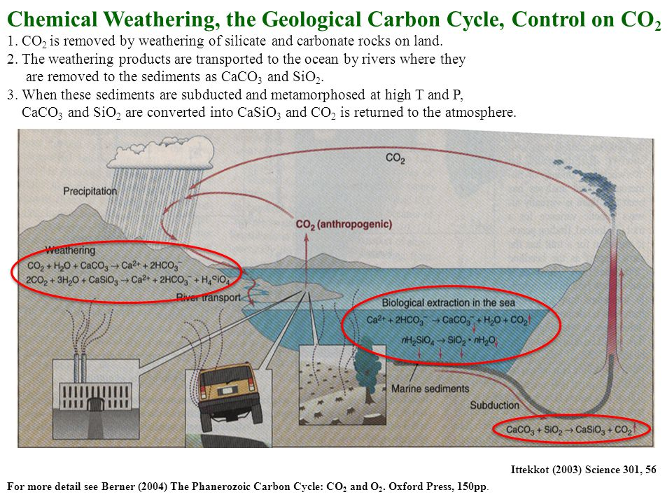 Chemical Weathering, the Geological Carbon Cycle, Control on CO 2 1.