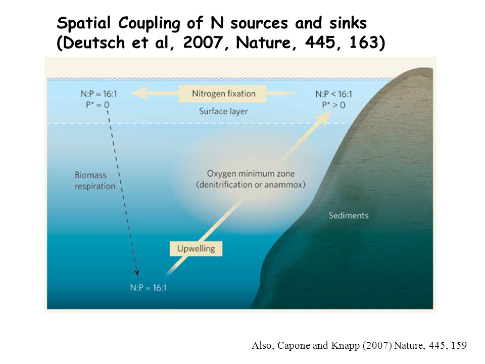 Spatial Coupling of N sources and sinks (Deutsch et al, 2007, Nature, 445, 163) Also, Capone and Knapp (2007) Nature, 445, 159
