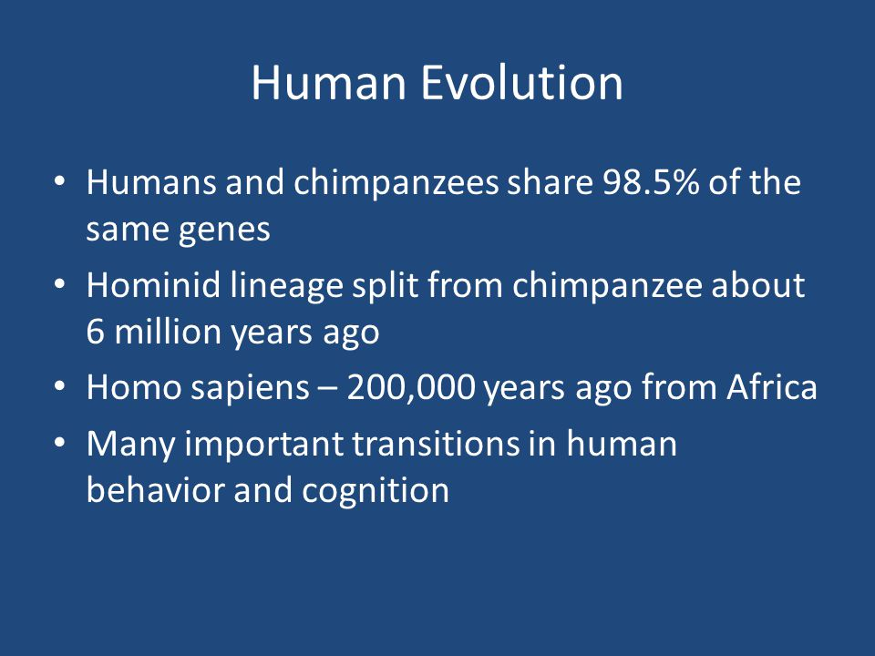 Human Evolution Humans and chimpanzees share 98.5% of the same genes Hominid lineage split from chimpanzee about 6 million years ago Homo sapiens – 20