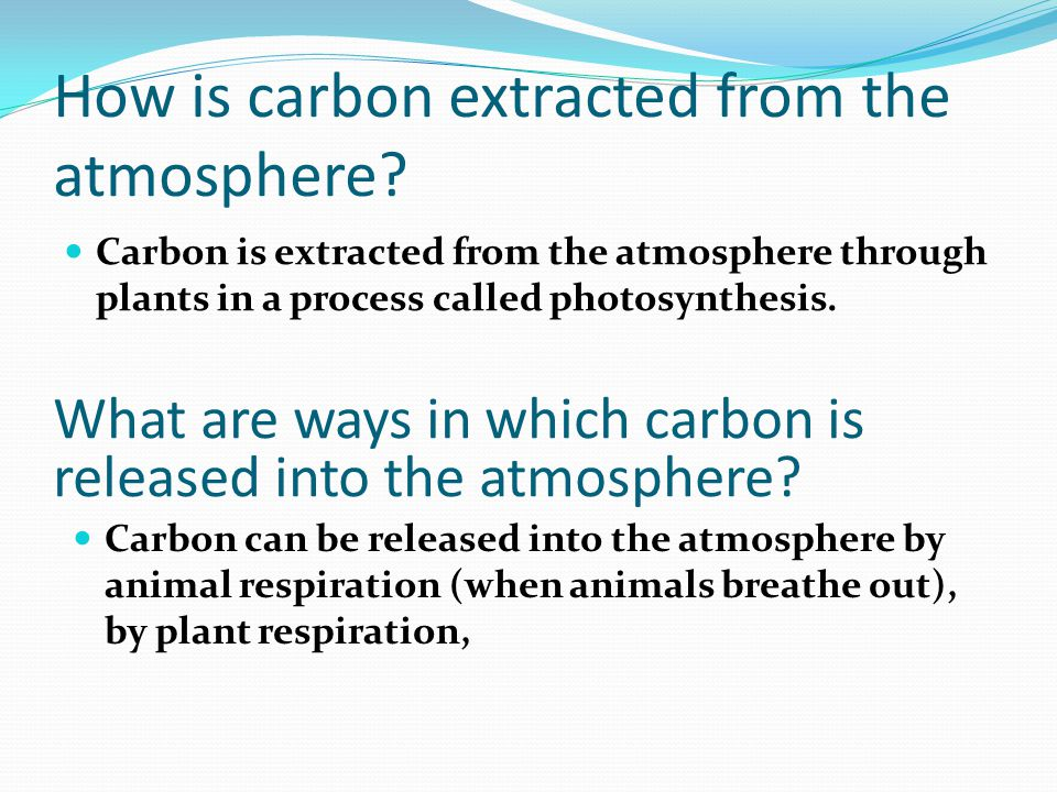 How is carbon extracted from the atmosphere.