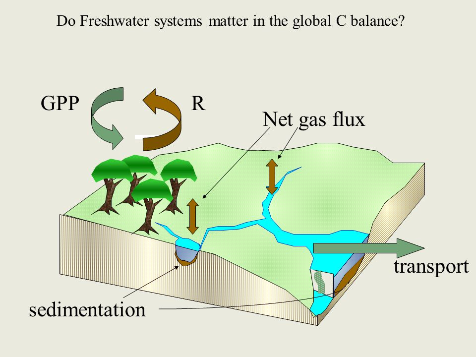 GPPR sedimentation Net gas flux transport Do Freshwater systems matter in the global C balance