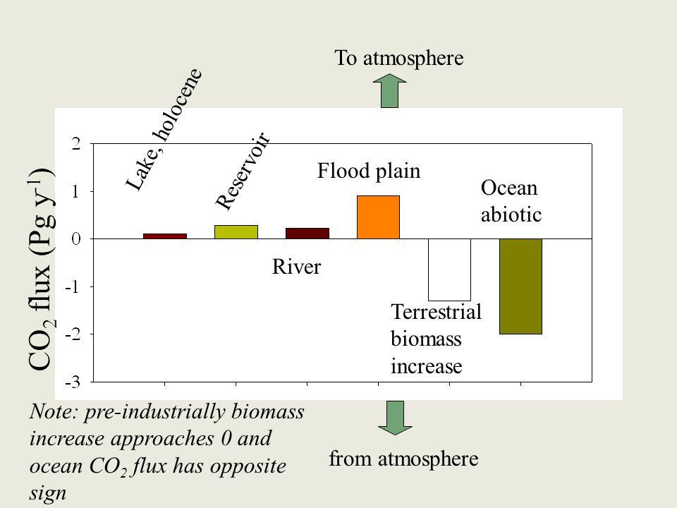 Lake, holocene Reservoir River Flood plain Ocean abiotic Terrestrial biomass increase CO 2 flux (Pg y -1 ) To atmosphere from atmosphere Note: pre-ind
