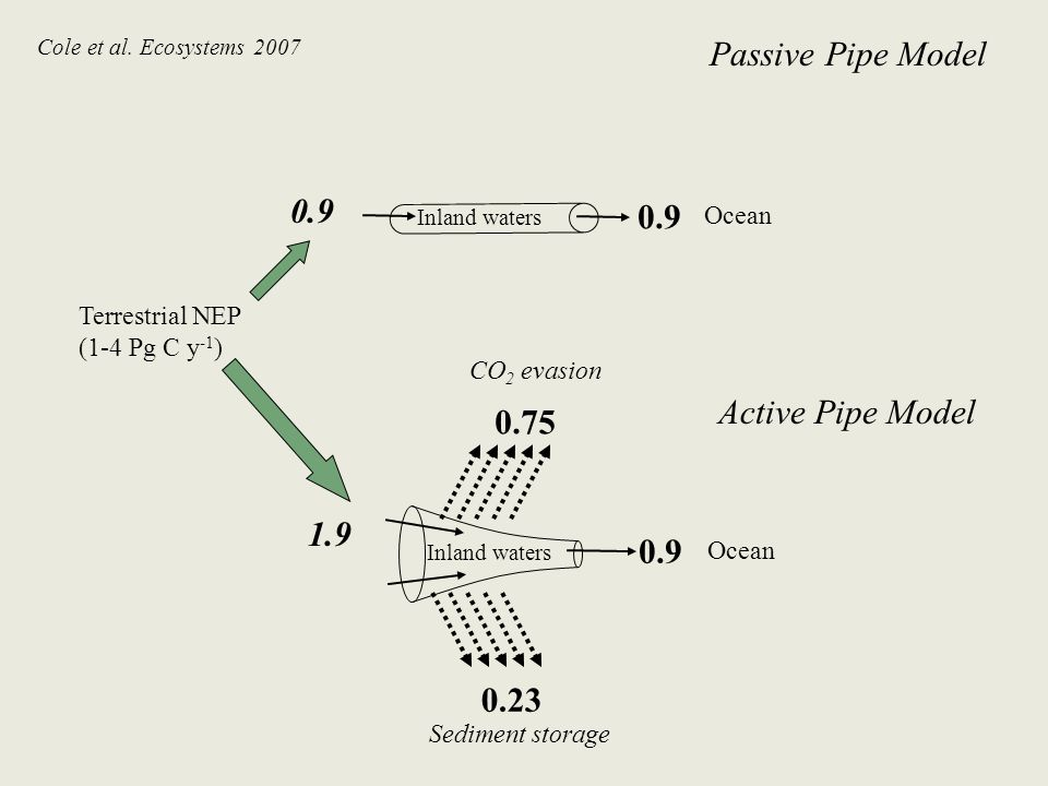 Ocean Sediment storage Inland waters Ocean Terrestrial NEP (1-4 Pg C y -1 ) Inland waters CO 2 evasion 0.9 1.9 0.75 0.23 Passive Pipe Model Active Pipe Model Cole et al.