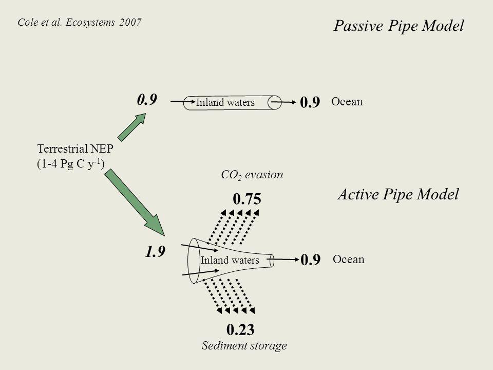 Ocean Sediment storage Inland waters Ocean Terrestrial NEP (1-4 Pg C y -1 ) Inland waters CO 2 evasion 0.9 1.9 0.75 0.23 Passive Pipe Model Active Pip