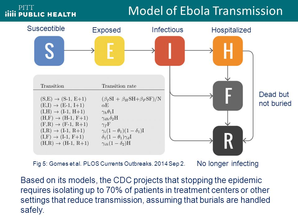 Model of Ebola Transmission Susceptible Hospitalized Infectious Exposed Dead but not buried No longer infecting Fig 5: Gomes et al.