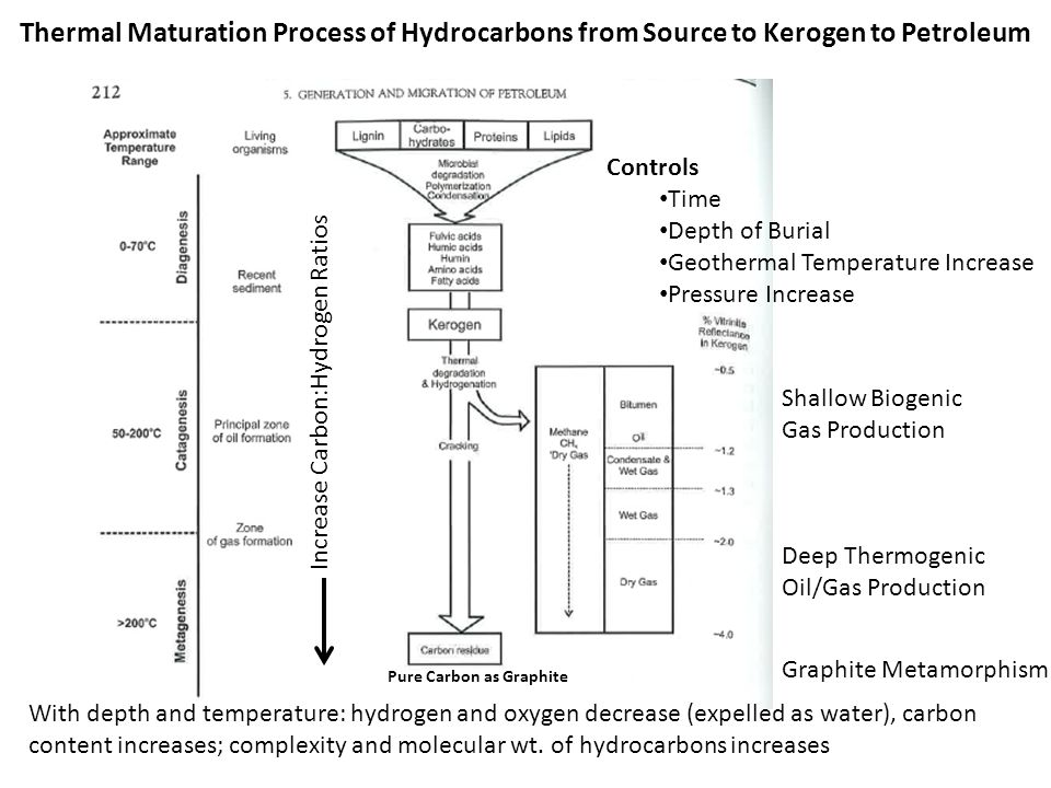 Thermal Maturation Process of Hydrocarbons from Source to Kerogen to Petroleum Controls Time Depth of Burial Geothermal Temperature Increase Pressure