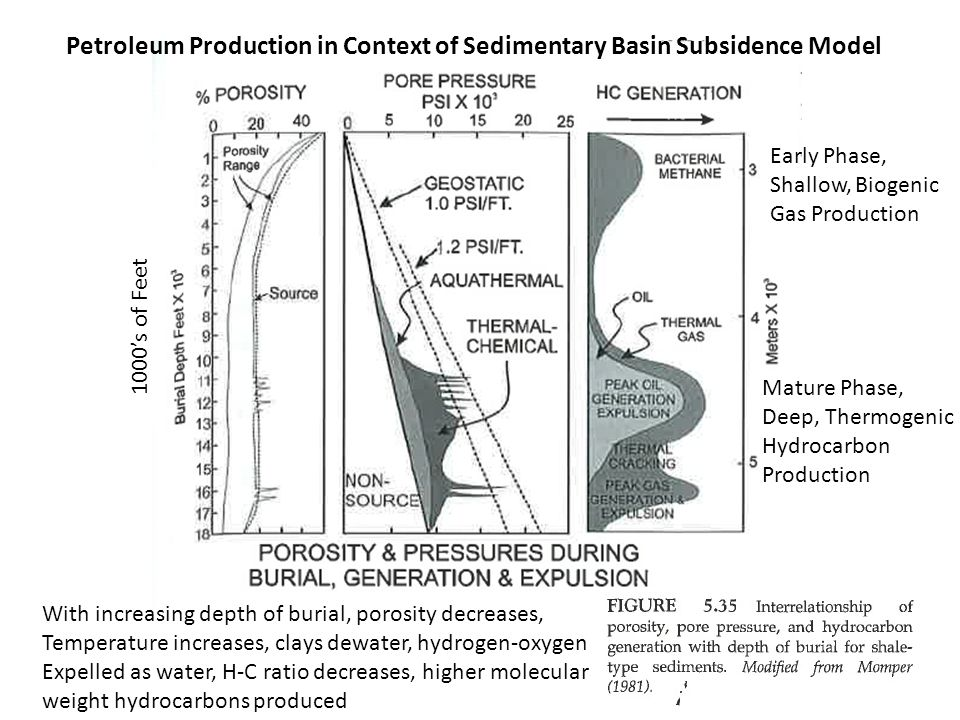 1000's of Feet Early Phase, Shallow, Biogenic Gas Production Mature Phase, Deep, Thermogenic Hydrocarbon Production Petroleum Production in Context of