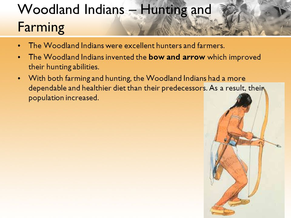 Woodland Indians – Hunting and Farming The Woodland Indians were excellent hunters and farmers.