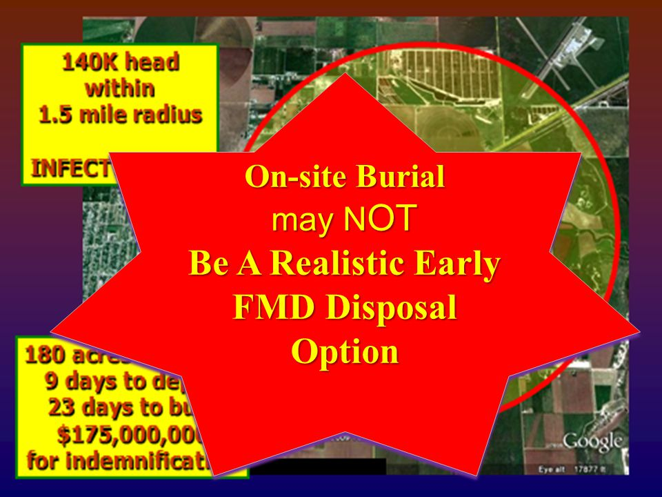 Company LOGO On-site Burial may N OT Be A Realistic Early FMD Disposal Option On-site Burial may N OT Be A Realistic Early FMD Disposal Option