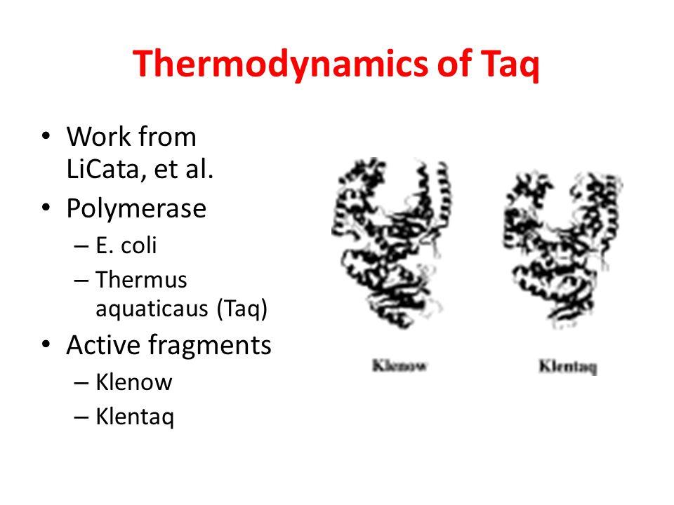 Thermodynamics of Taq Work from LiCata, et al. Polymerase – E. coli – Thermus aquaticaus (Taq) Active fragments – Klenow – Klentaq