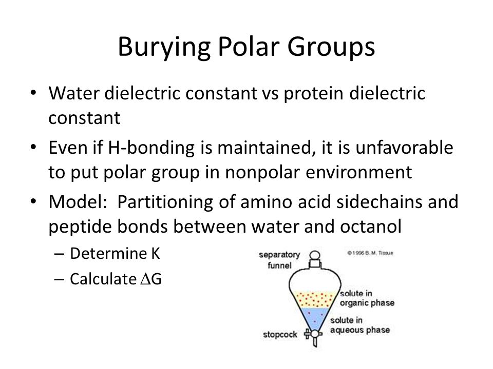 Burying Polar Groups Water dielectric constant vs protein dielectric constant Even if H-bonding is maintained, it is unfavorable to put polar group in