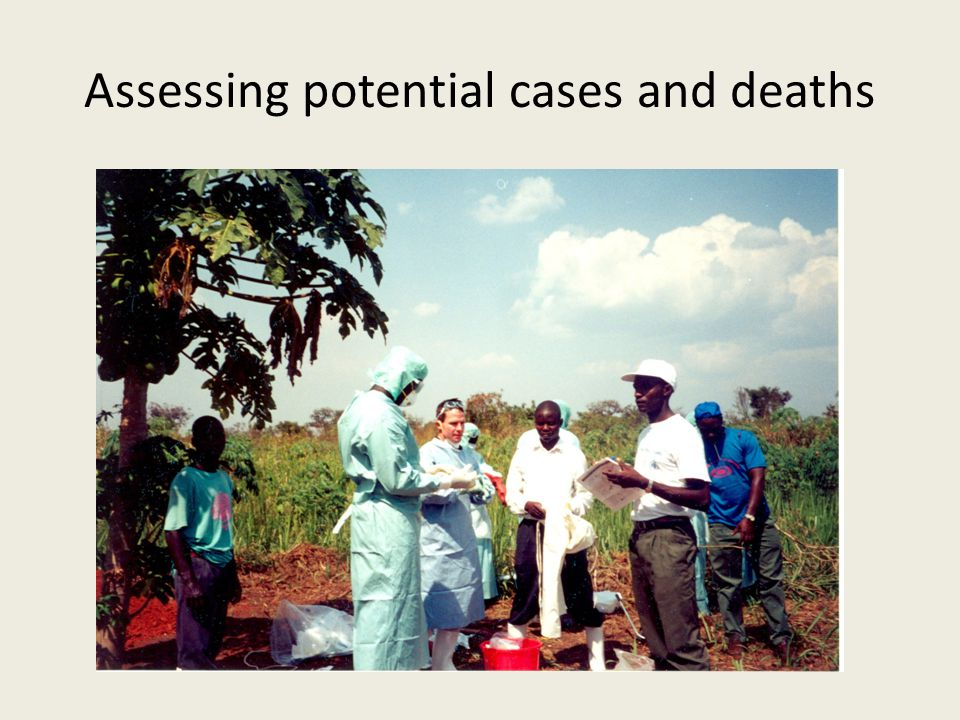 Assessing potential cases and deaths