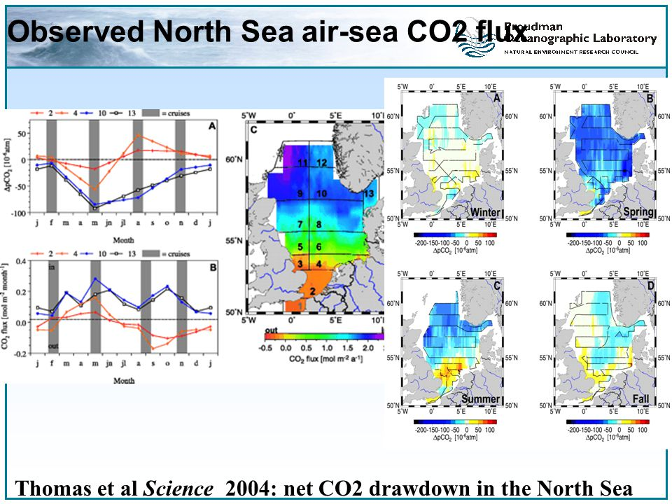 Observed North Sea air-sea CO2 flux Thomas et al Science 2004: net CO2 drawdown in the North Sea