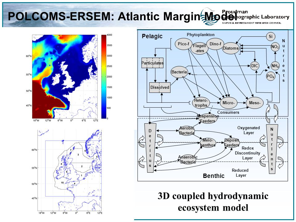 POLCOMS-ERSEM: Atlantic Margin Model 3D coupled hydrodynamic ecosystem model