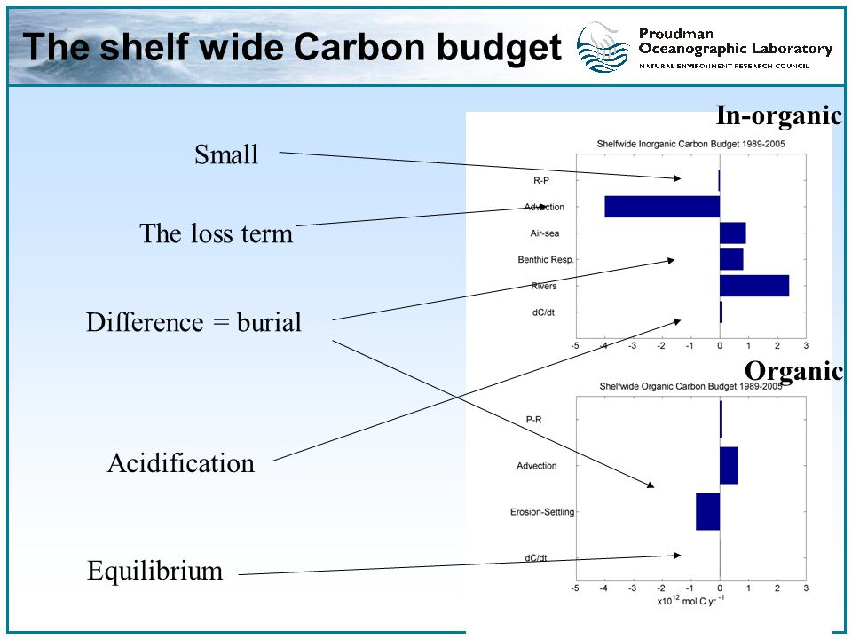 The shelf wide Carbon budget The loss term Difference = burial In-organic Organic Acidification Small Equilibrium