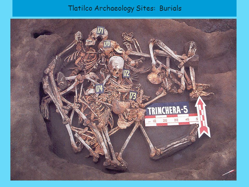 Tlatilco Archaeology Sites: Burials