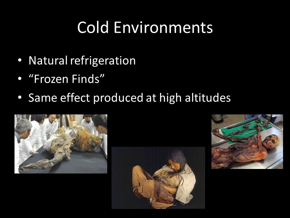 Cold Environments Natural refrigeration Frozen Finds Same effect produced at high altitudes Sa