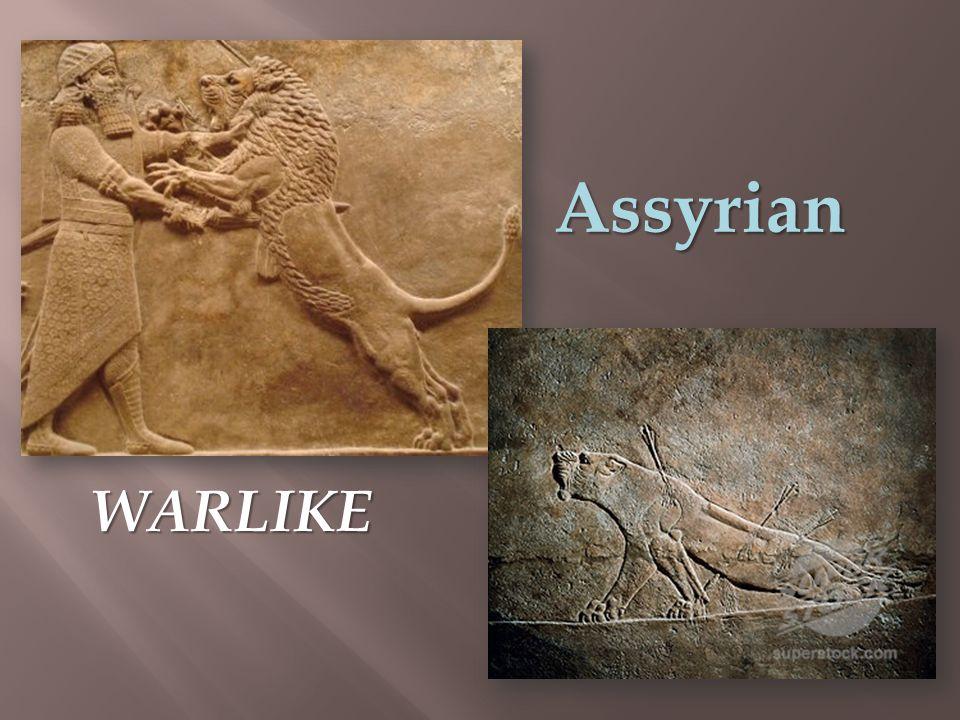 Assyrian WARLIKE