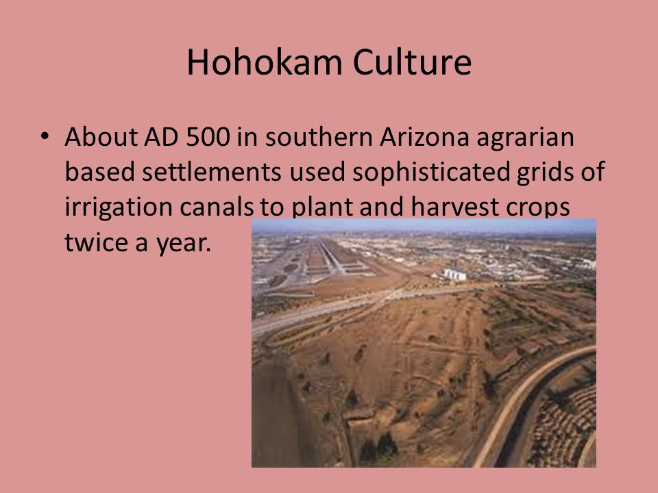 Hohokam Culture About AD 500 in southern Arizona agrarian based settlements used sophisticated grids of irrigation canals to plant and harvest crops t