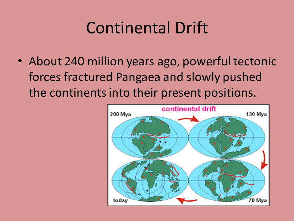 Continental Drift About 240 million years ago, powerful tectonic forces fractured Pangaea and slowly pushed the continents into their present positions.
