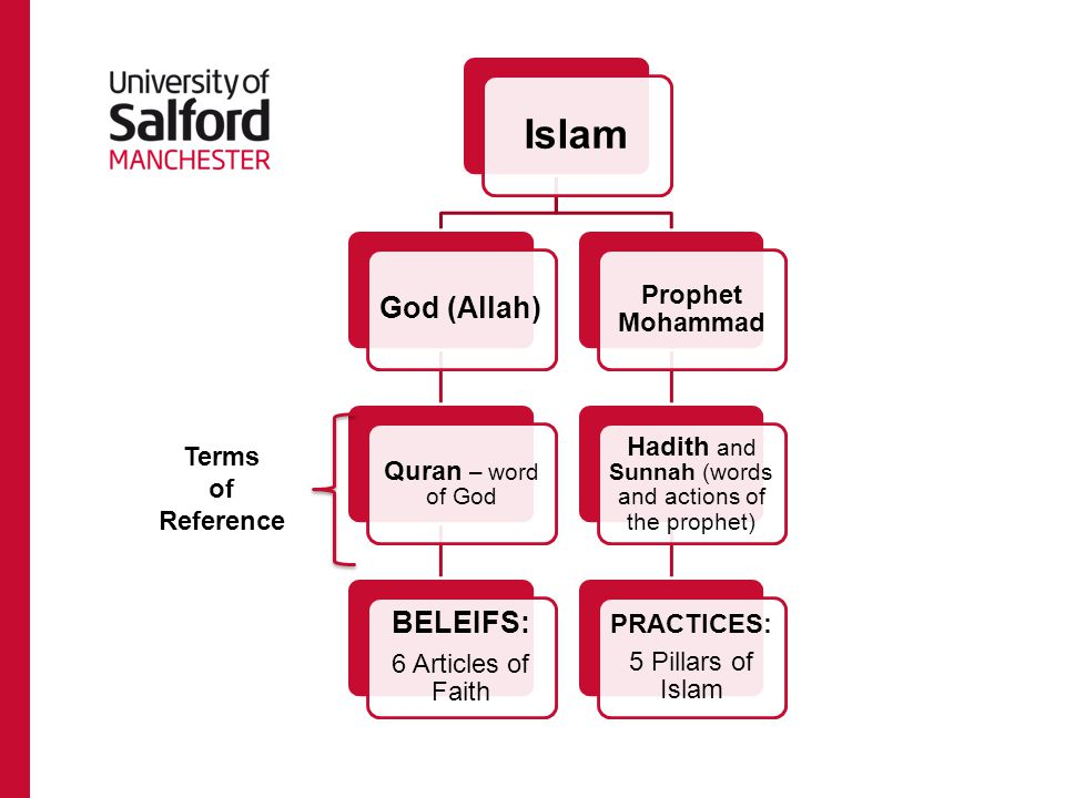 Islam God (Allah) Quran – word of God BELEIFS: 6 Articles of Faith Prophet Mohammad Hadith and Sunnah (words and actions of the prophet) PRACTICES: 5 Pillars of Islam Terms of Reference