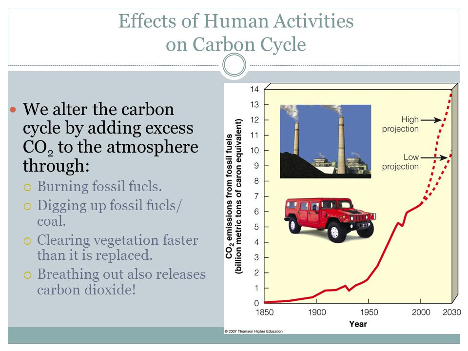 Effects of Human Activities on Carbon Cycle We alter the carbon cycle by adding excess CO 2 to the atmosphere through:  Burning fossil fuels.