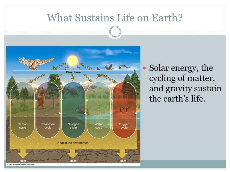 What Sustains Life on Earth.