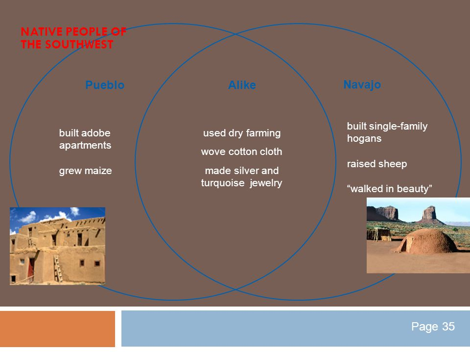 Pueblo Navajo used dry farming wove cotton cloth made silver and turquoise jewelry built adobe apartments grew maize built single-family hogans raised