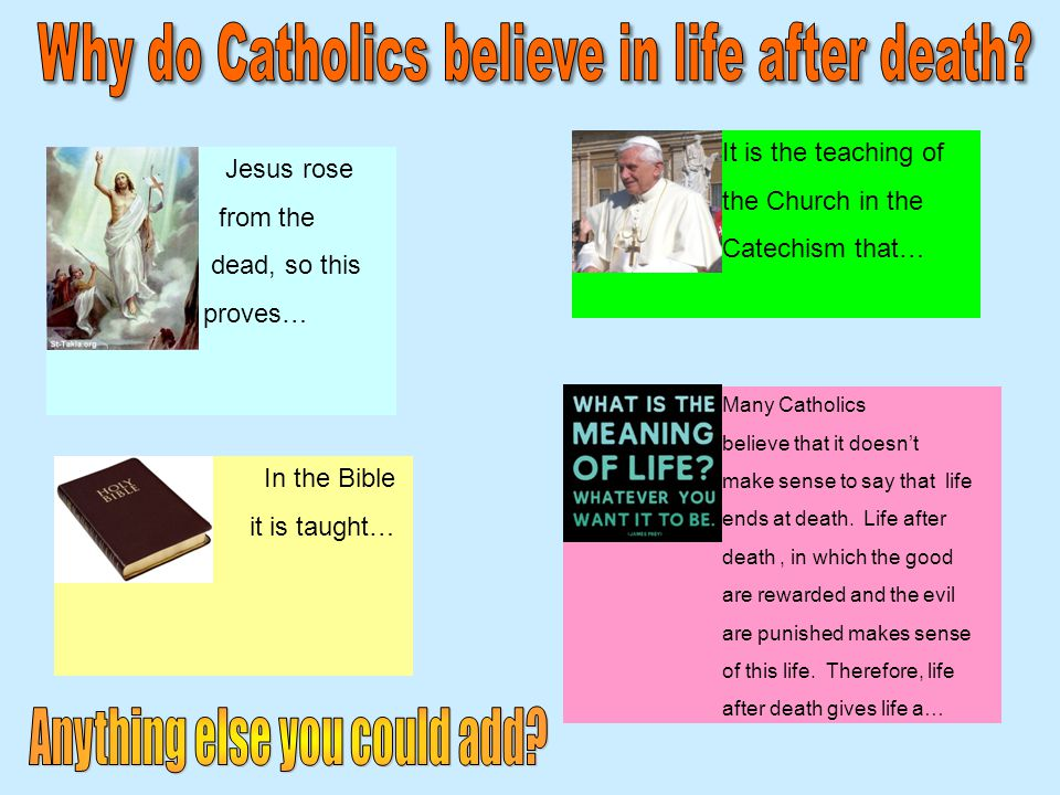 Jesus rose from the dead, so this proves… In the Bible it is taught… It is the teaching of the Church in the Catechism that… Many Catholics believe that it doesn't make sense to say that life ends at death.