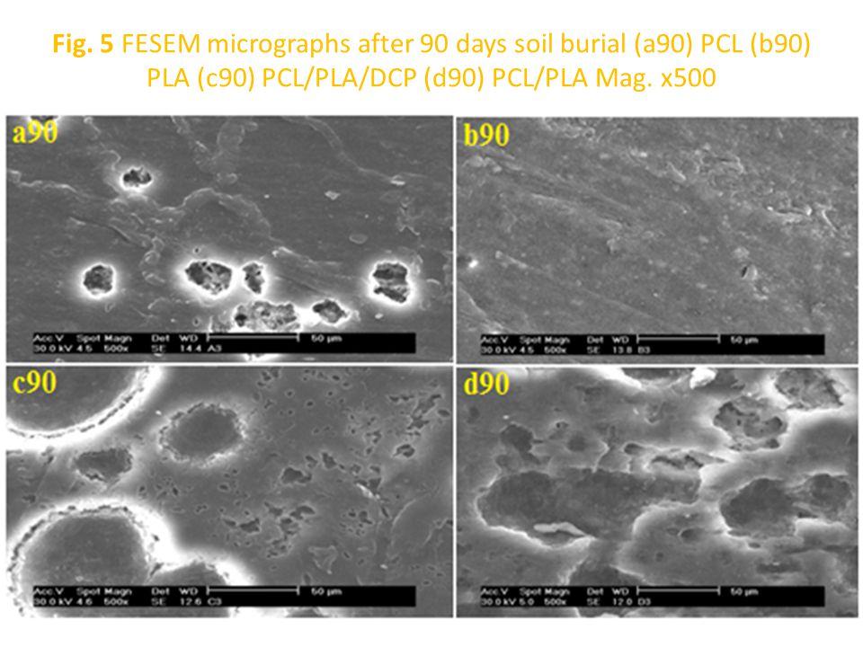 Fig. 5 FESEM micrographs after 90 days soil burial (a90) PCL (b90) PLA (c90) PCL/PLA/DCP (d90) PCL/PLA Mag. x500