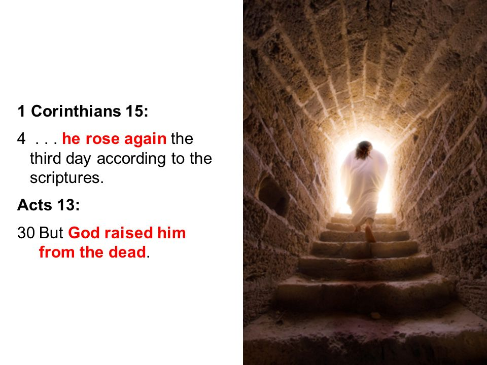 29 1 Corinthians 15: 4... he rose again the third day according to the scriptures.