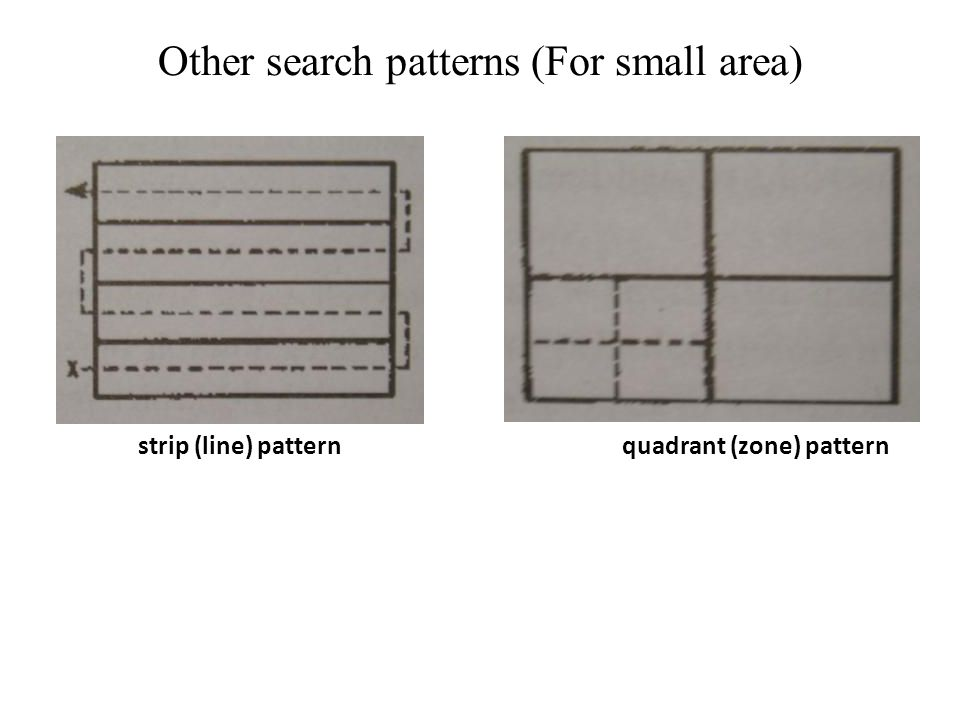 Other search patterns (For small area) strip (line) patternquadrant (zone) pattern