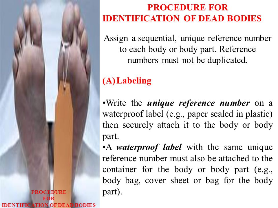 PROCEDURE FOR IDENTIFICATION OF DEAD BODIES Assign a sequential, unique reference number to each body or body part.