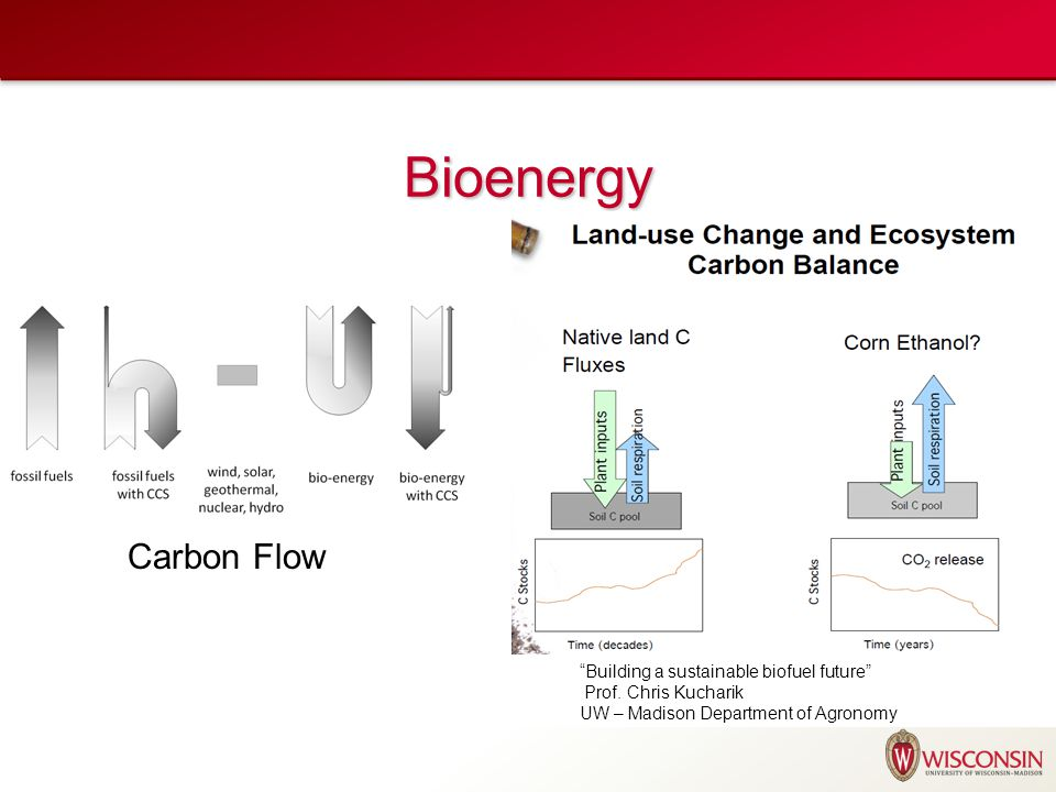 Bioenergy Carbon Flow Building a sustainable biofuel future Prof.