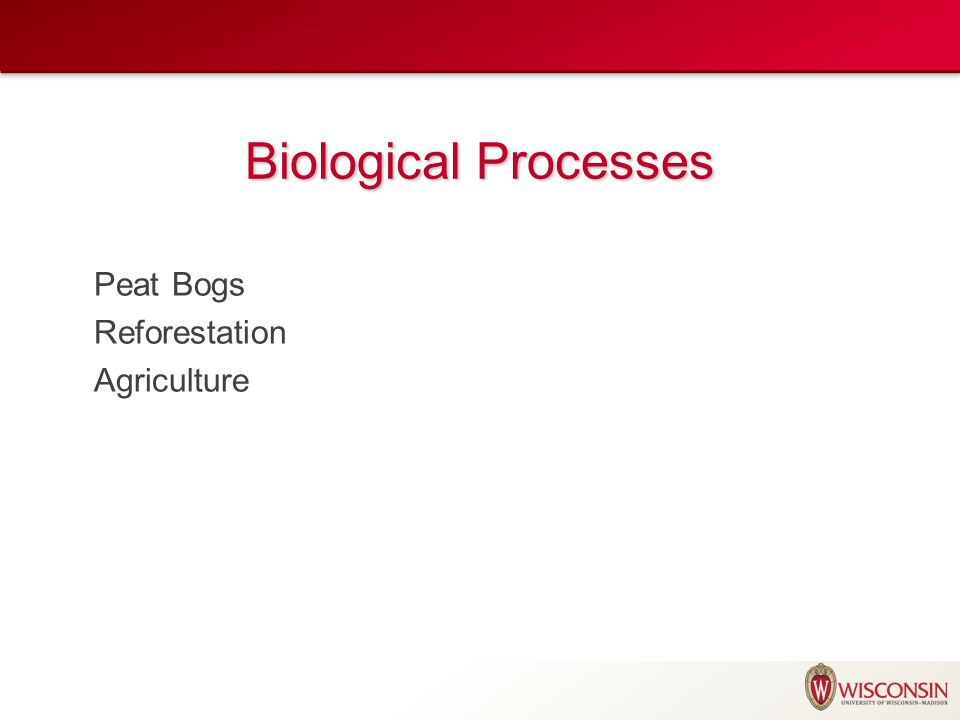 Biological Processes Peat Bogs Reforestation Agriculture