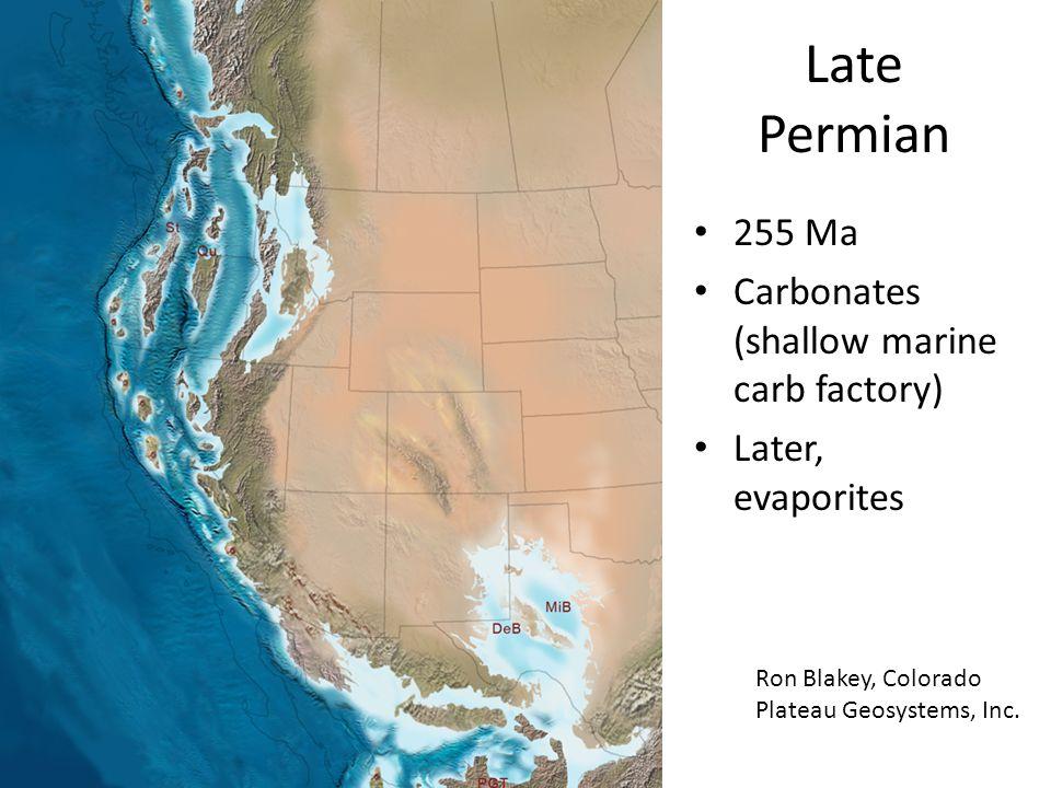 Late Permian 255 Ma Carbonates (shallow marine carb factory) Later, evaporites Ron Blakey, Colorado Plateau Geosystems, Inc.