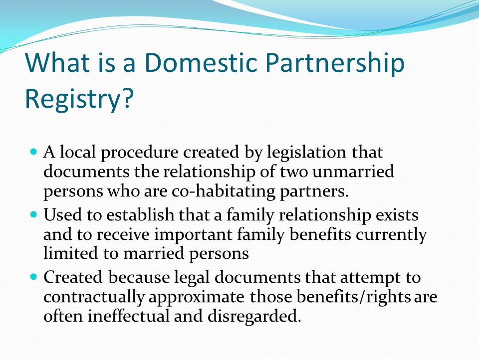 What is a Domestic Partnership Registry.
