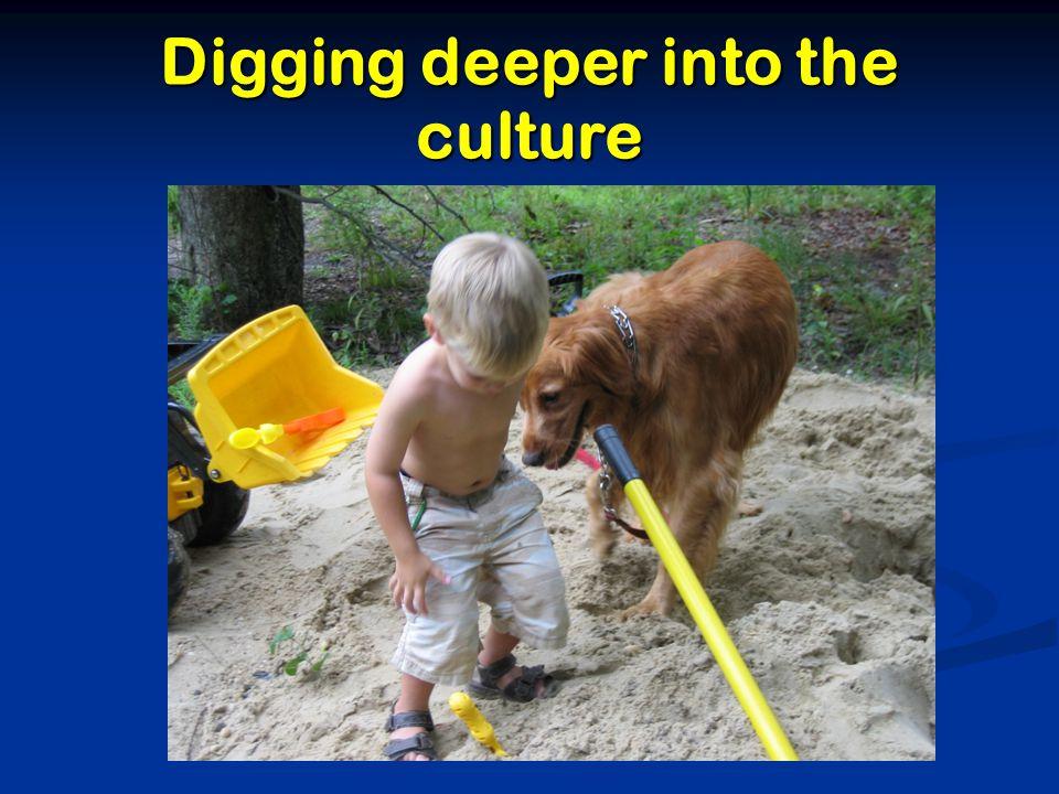 Digging deeper into the culture