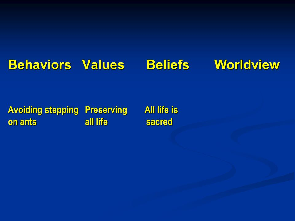 Behaviors Values Beliefs Worldview Avoiding stepping Preserving All life is on ants all life sacred