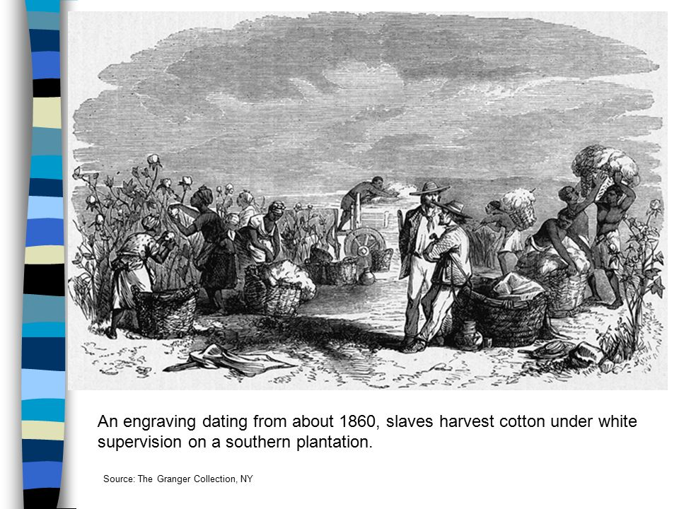 An engraving dating from about 1860, slaves harvest cotton under white supervision on a southern plantation. Source: The Granger Collection, NY