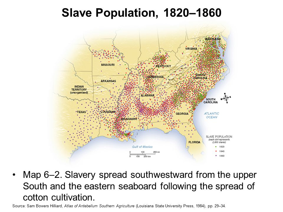 Urban Slavery Were the immigrants of the South Jobs include: domestics, washwomen, stevedores, general laborers + Interacted with free black community + Had opportunities to hire out ($$)