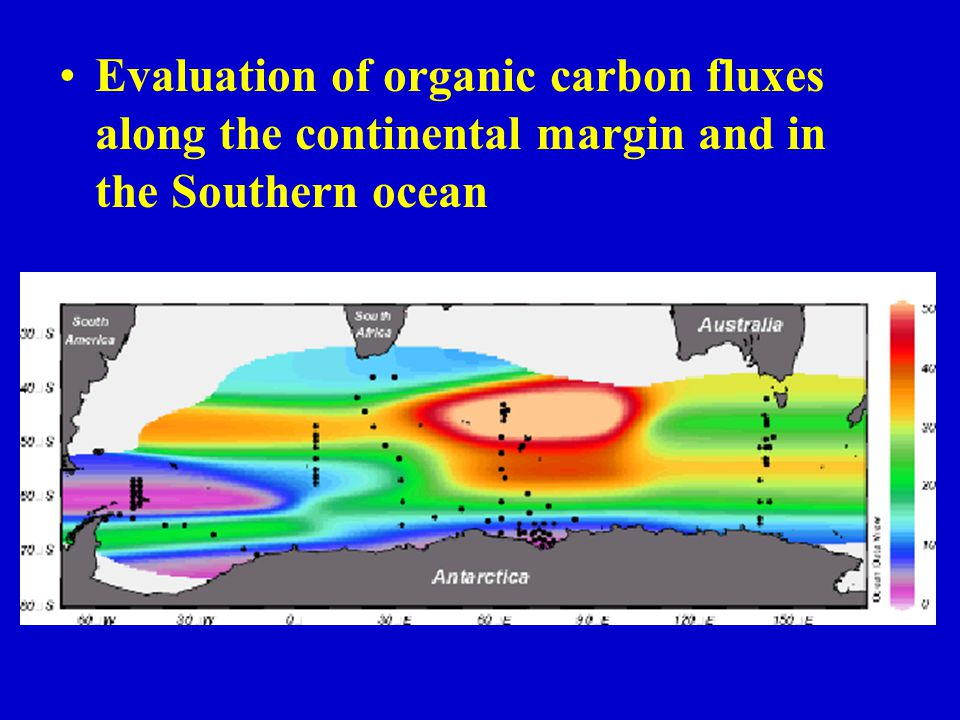 Evaluation of organic carbon fluxes along the continental margin and in the Southern ocean