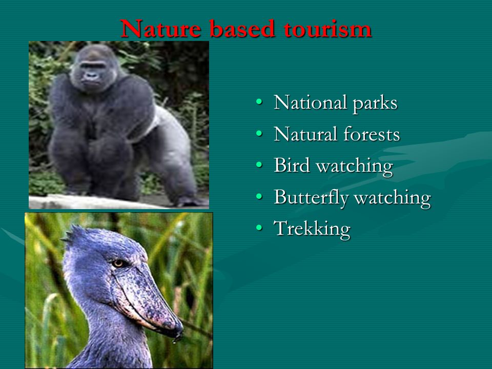 Nature based tourism National parks Natural forests Bird watching Butterfly watching Trekking