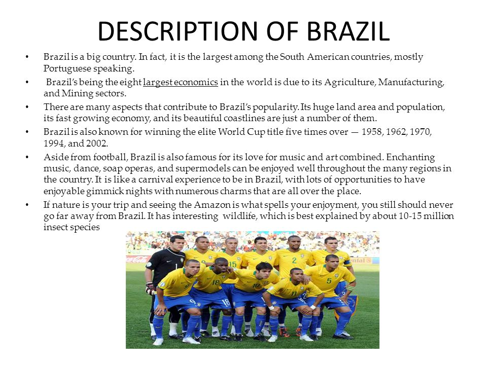 DESCRIPTION OF BRAZIL Brazil is a big country.