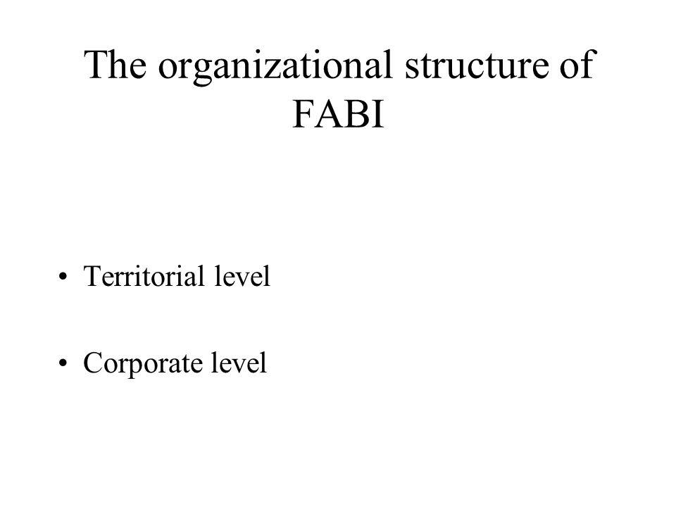 The organizational structure of FABI Territorial level Corporate level