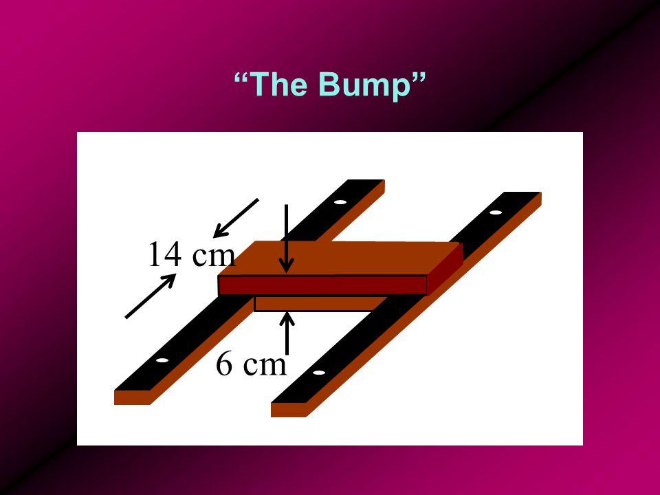 The Bump 14 cm 6 cm
