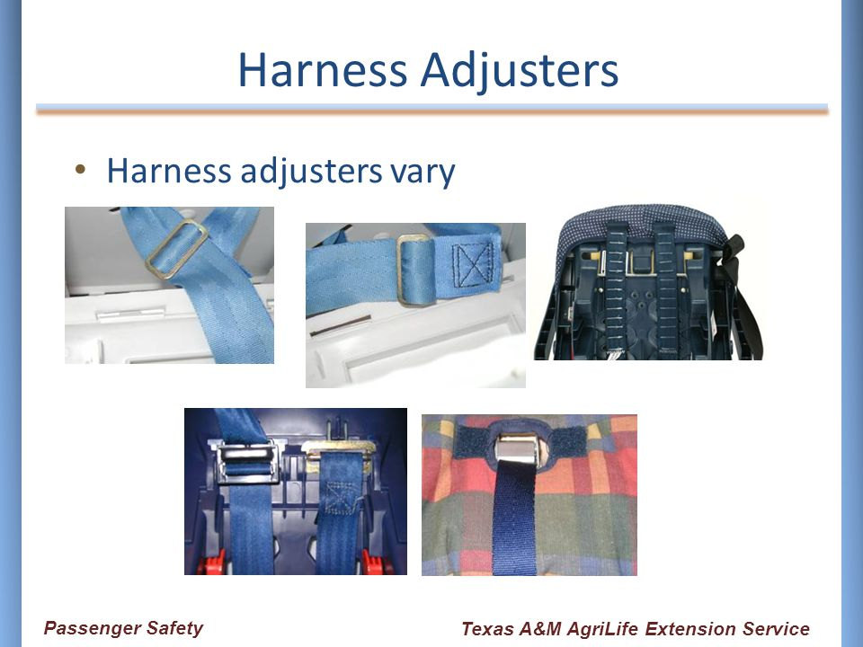 Harness Adjusters Harness adjusters vary Passenger Safety Texas A&M AgriLife Extension Service